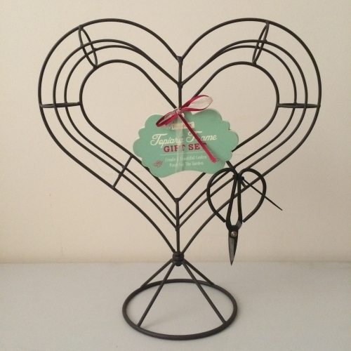 Heart Shaped Topiary Set - £9.99