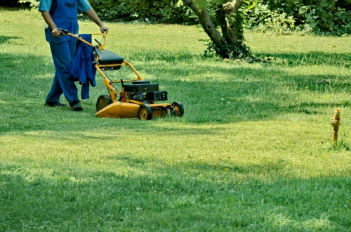 Fab mow services gardening services in huddersfield for Local gardening services