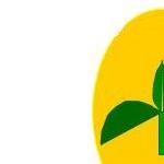 Bio Organix Logo New