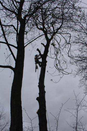Climbing During Dismantle