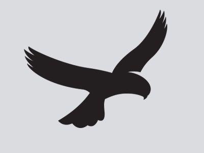 Kestrelqas Ltd Logo