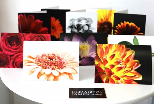 A6 Art Greetings Cards