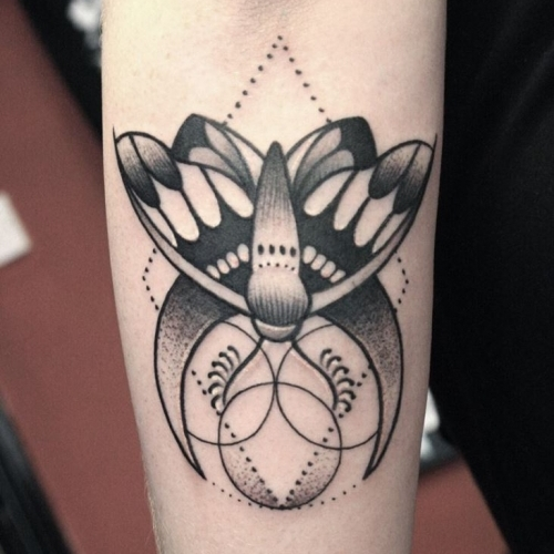 Geometric moth by Hanna