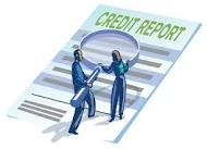Business & Company Credit Reports