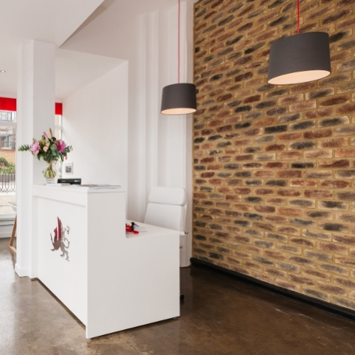 Smokestack Brick Slips Used In Reception Area