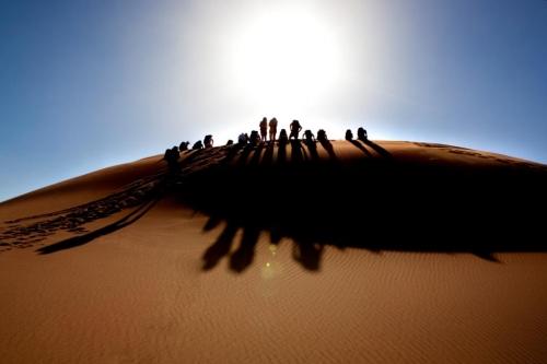 Sahara Tour Operators In Marrakesh