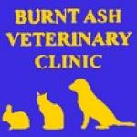 Burnt Ash Veterinary Clinic - vetinary surgeons