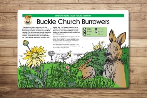 Illustrated Countryside Interpretation Panel Design