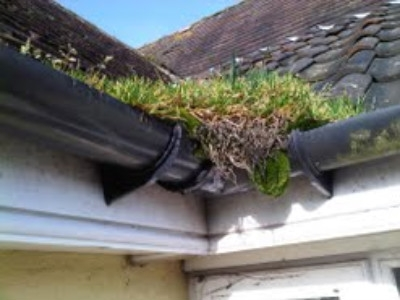 Full Gutters can cause damage to your exterior  & interior walls