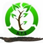 Aaron Tree Services