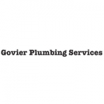 D. Govier Plumbing Services - tilers