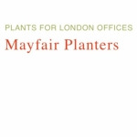 Mayfair Planters Ltd
