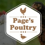 Page's Poultry
