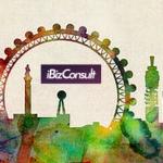 Internet Business Consultants Ltd
