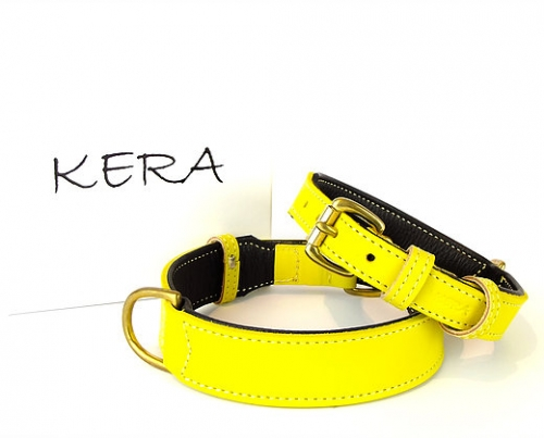 Luxury Yellow Dog Collars