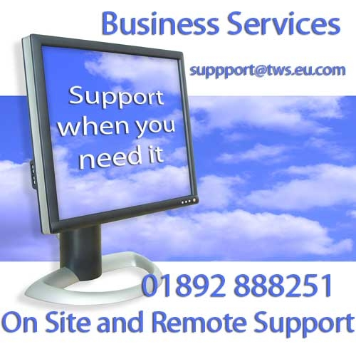 TWS Business Services