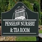 Penshaw Nursery