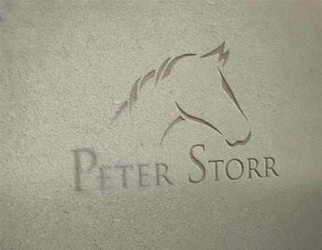 Peterstorr logo design