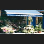 Town & County Flowers - florists