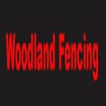 Woodland Fencing & Hedges