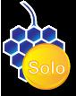 Invoiceberry Solo