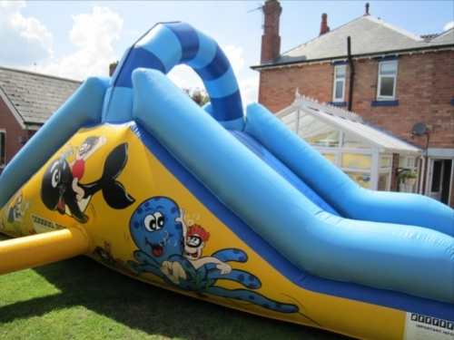 Sea Fun Bouncy Slide