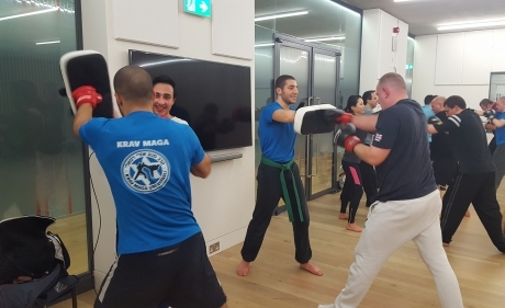 Krav Maga in progress