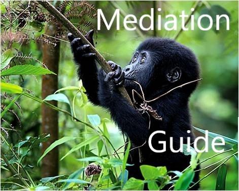 Mediation Guide Resolve UK