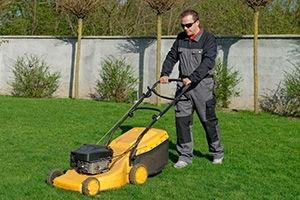 N1 Gardening Services Islington G 16