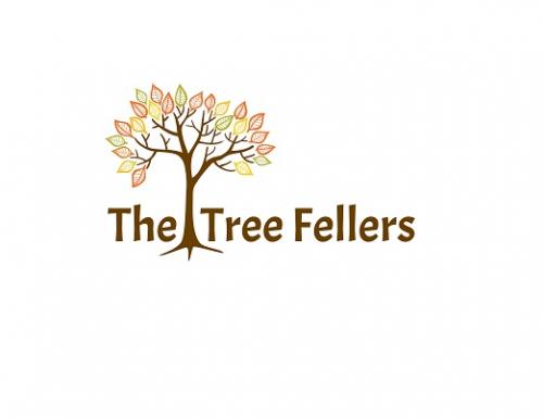 The Tree Fellers - Tree Surgeons