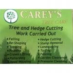 Carey's Tree Care & Landscape