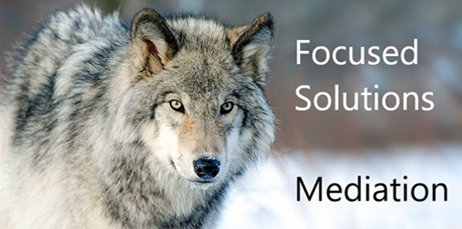 Focused Solutions