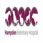 Hampden Vets, Fairford Leys Surgery