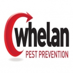 Pest Management Hertford