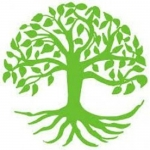 Beeches Tree Care Ltd
