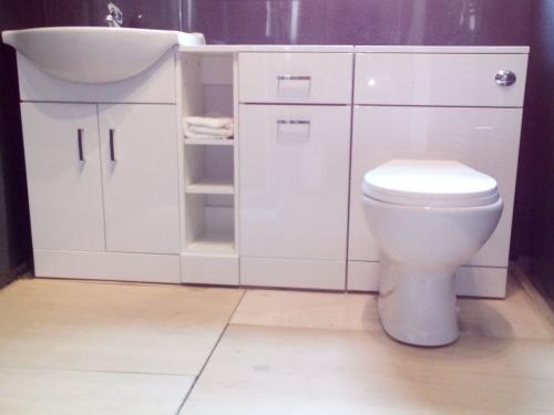 Fix Toilet