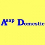 ASAP Domestic