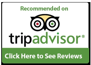 Recommended on Tripadvsior -5*