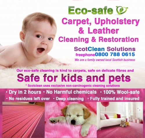 Eco safe carpet cleaning.