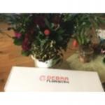 Debra Floristry