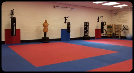 Bristol Martial Arts Academy Training Bags
