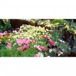 PME Horticultural