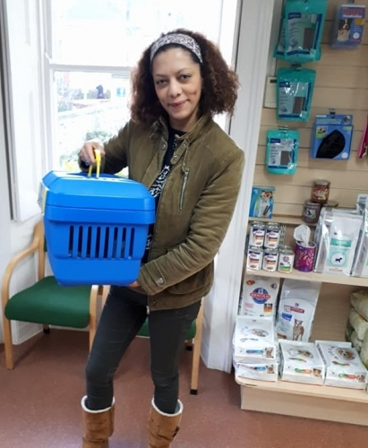 Barney the cat at Wood Street Vets with Tara whilst his owner awaits his return from the comfort of her home