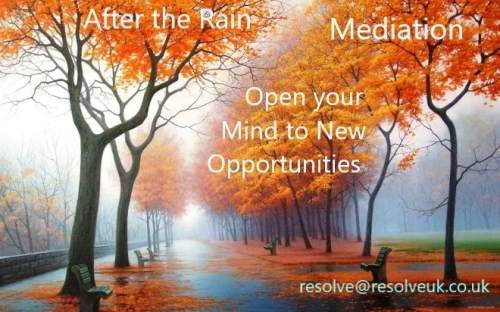 Mediation New Opportunities