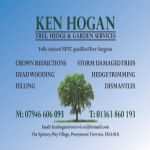 Ken Hogan Tree, Hedge & Garden Services