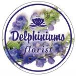 Delphiniums Florist