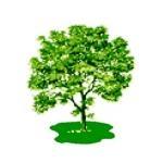 Ashtree Management Services Ltd