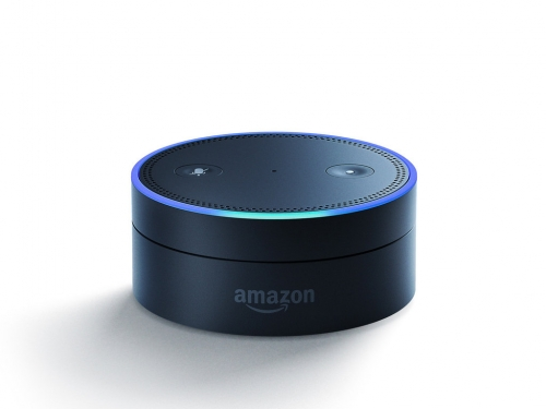 Service Requests via Amazon Alexa