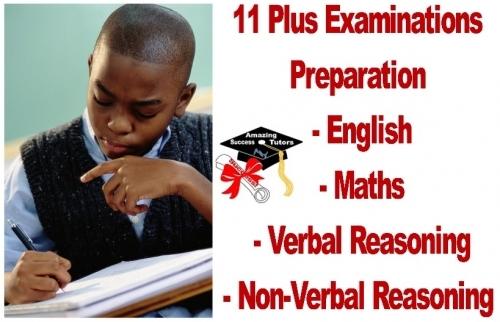 11plus Exams Banner