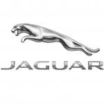 Guy Salmon Jaguar, Northampton